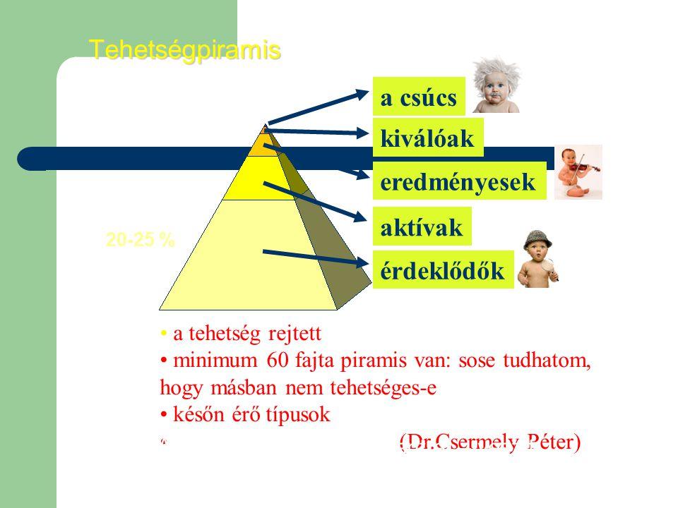érdeklődők aktívak eredményesek kiválóak a csúcsTehetségpiramis a tehetség rejtett minimum 60 fajta piramis van: sose tudhatom, hogy másban nem tehetséges-e későn érő típusok (Dr.Csermely Péter) Aki csak a tetejére koncentrál – veszít 20-25 %