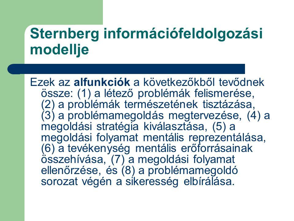 Sternberg információfeldolgozási modellje Ezek az alfunkciók a következőkből tevődnek össze: (1) a létező problémák felismerése, (2) a problémák természetének tisztázása, (3) a problémamegoldás megtervezése, (4) a megoldási stratégia kiválasztása, (5) a megoldási folyamat mentális reprezentálása, (6) a tevékenység mentális erőforrásainak összehívása, (7) a megoldási folyamat ellenőrzése, és (8) a problémamegoldó sorozat végén a sikeresség elbírálása.