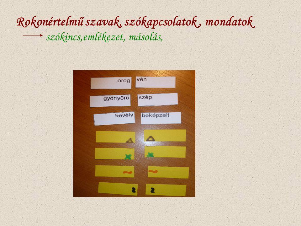 Rokonértelmű szavak, szókapcsolatok, mondatok szókincs,emlékezet, másolás,