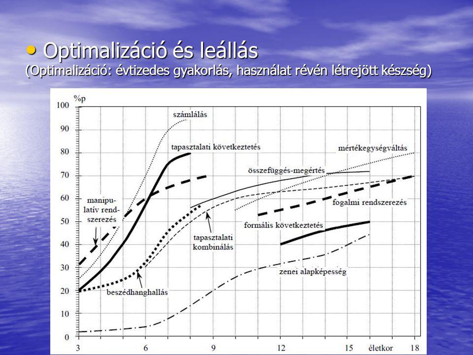 Optimalizáció és leállás Optimalizáció és leállás (Optimalizáció: évtizedes gyakorlás, használat révén létrejött készség)