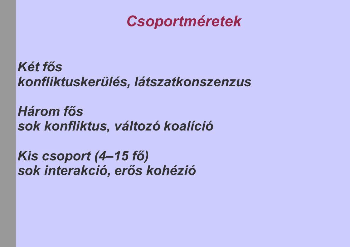 Csoportméretek Két fős konfliktuskerülés, látszatkonszenzus Három fős sok konfliktus, változó koalíció Kis csoport (4–15 fő) sok interakció, erős kohézió