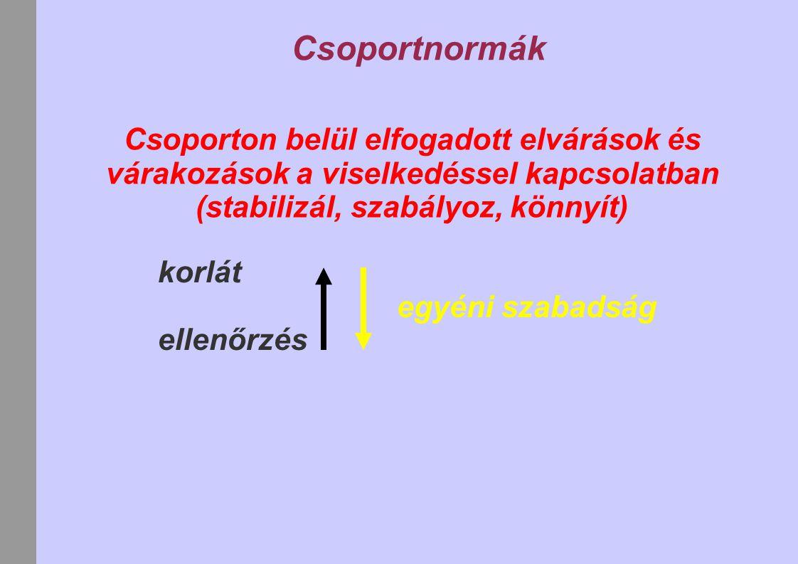 Csoportnormák Csoporton belül elfogadott elvárások és várakozások a viselkedéssel kapcsolatban (stabilizál, szabályoz, könnyít) korlát ellenőrzés egyéni szabadság