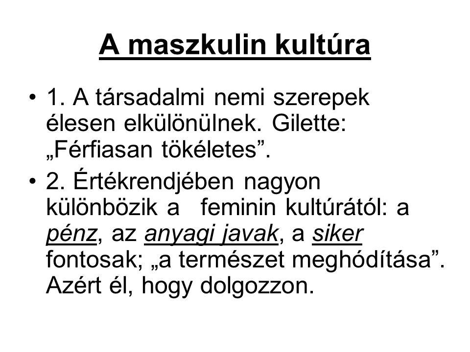 """A maszkulin kultúra 1. A társadalmi nemi szerepek élesen elkülönülnek. Gilette: """"Férfiasan tökéletes"""". 2. Értékrendjében nagyon különbözik a feminin k"""