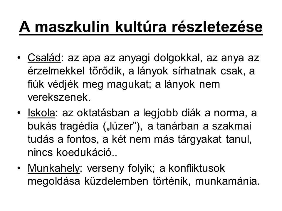 A maszkulin kultúra részletezése Család: az apa az anyagi dolgokkal, az anya az érzelmekkel törődik, a lányok sírhatnak csak, a fiúk védjék meg maguka