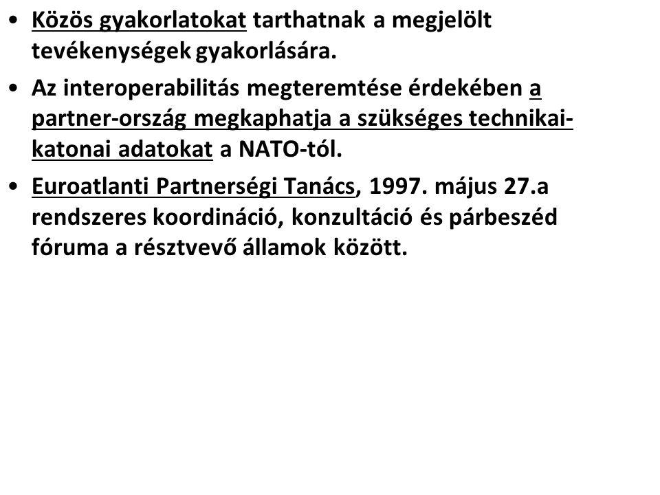 Washingtoni csúcsértekezlet (1999.április 24.) Új stratégiai koncepció: elrettentés és védelem.