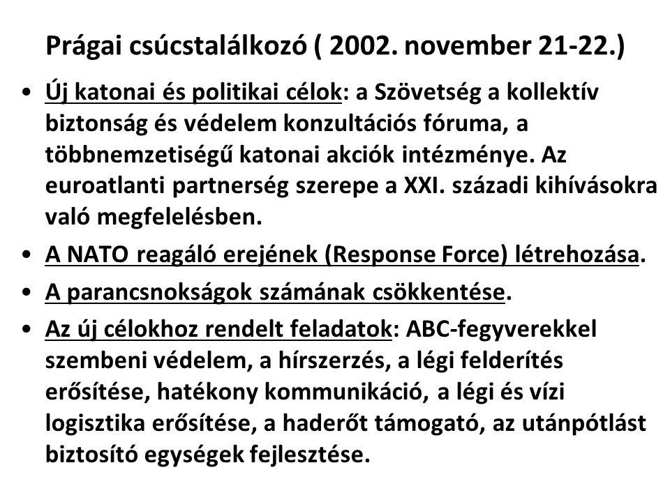 Prágai csúcstalálkozó ( 2002.
