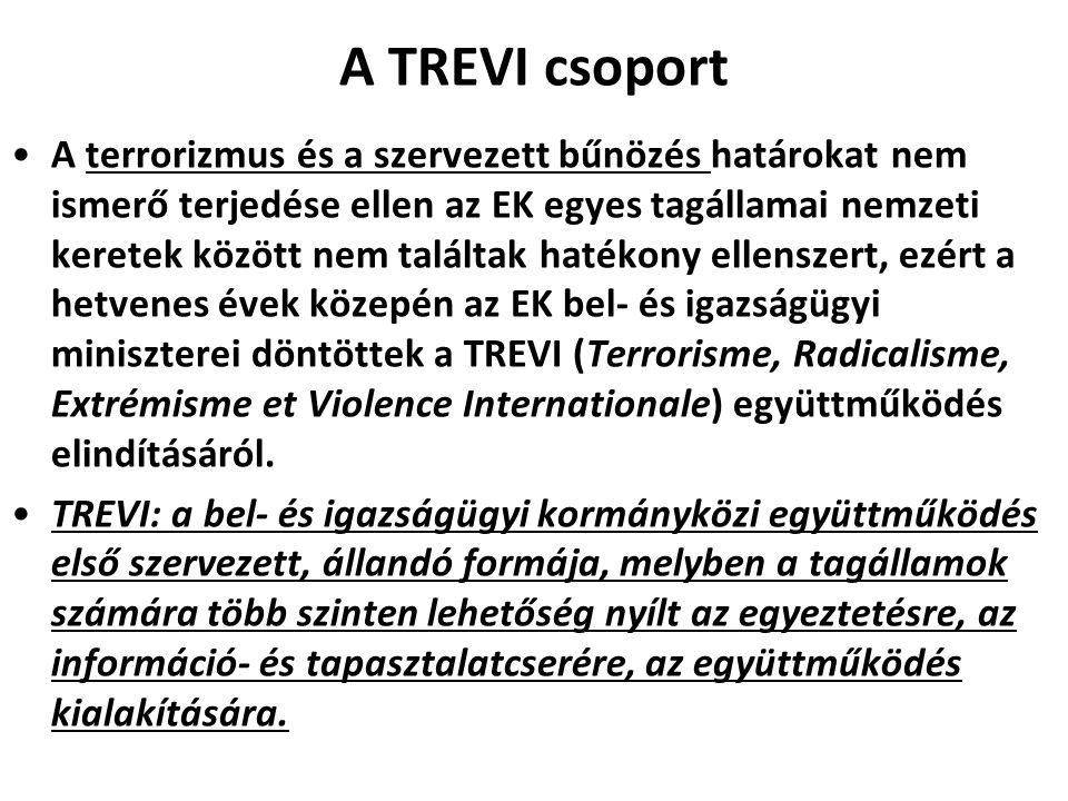 A TREVI csoport A terrorizmus és a szervezett bűnözés határokat nem ismerő terjedése ellen az EK egyes tagállamai nemzeti keretek között nem találtak