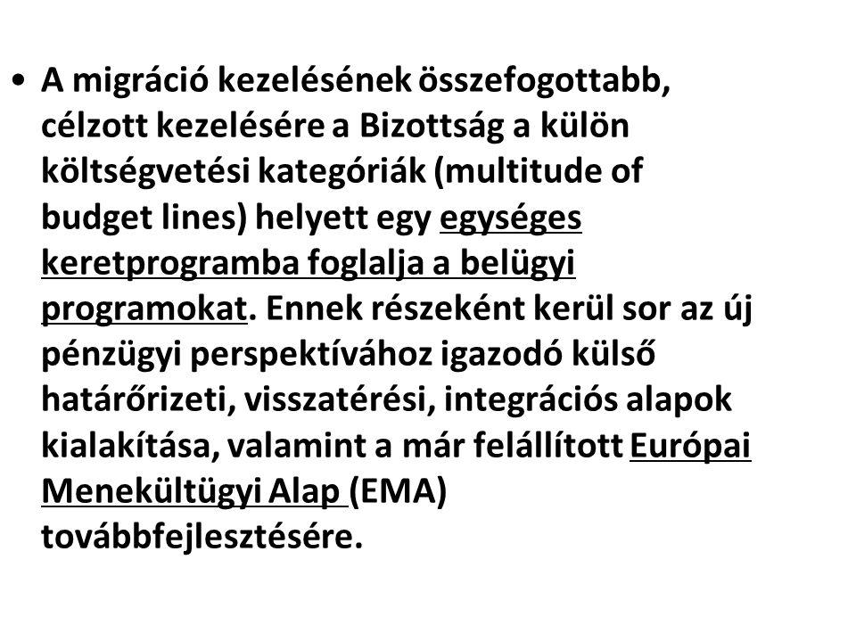 A migráció kezelésének összefogottabb, célzott kezelésére a Bizottság a külön költségvetési kategóriák (multitude of budget lines) helyett egy egysége