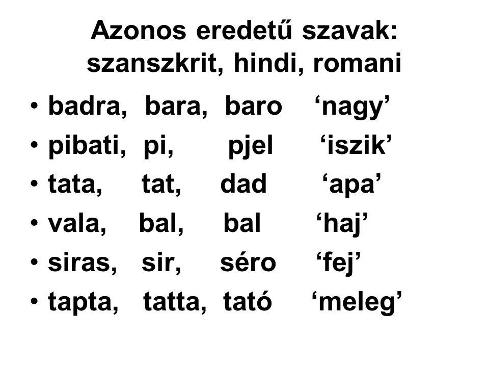 Azonos eredetű szavak: szanszkrit, hindi, romani badra, bara, baro 'nagy' pibati, pi, pjel 'iszik' tata, tat, dad 'apa' vala, bal, bal 'haj' siras, si
