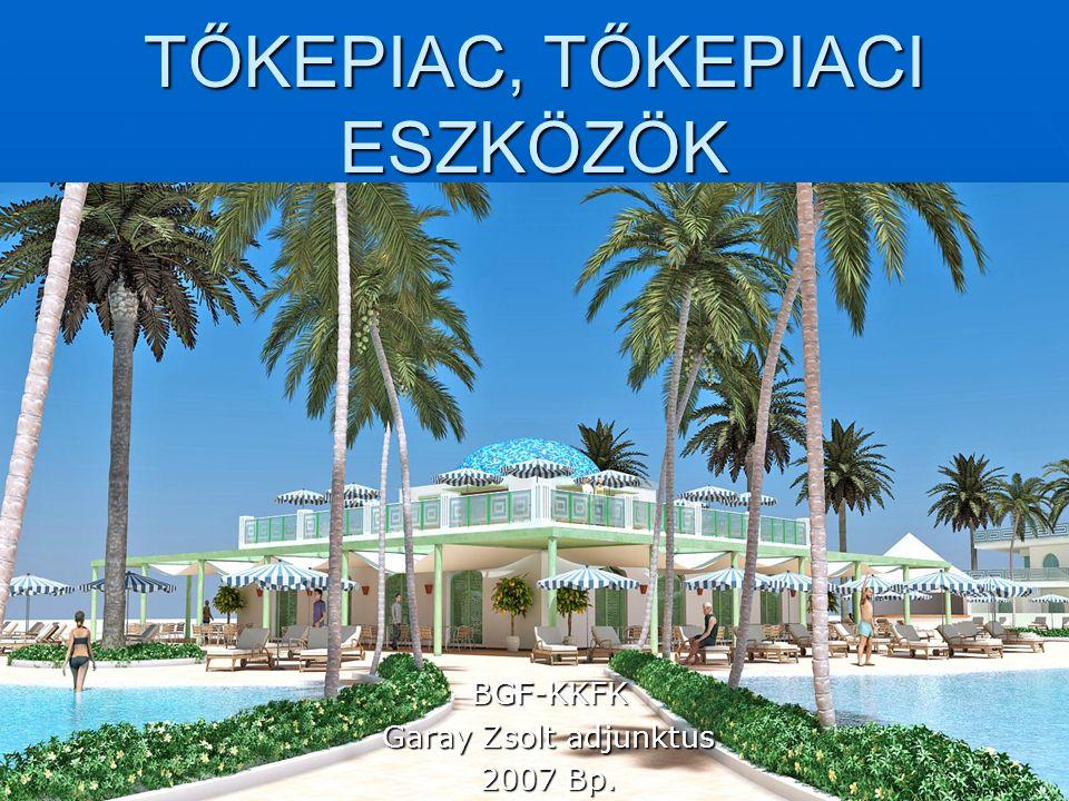 TŐKEPIAC, TŐKEPIACI ESZKÖZÖK BGF-KKFK Garay Zsolt adjunktus 2007 Bp.