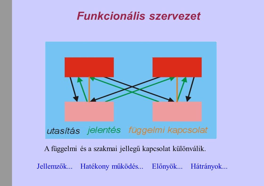 Funkcionális szervezet A függelmi és a szakmai jellegű kapcsolat különválik. Jellemzők... Hatékony működés... Előnyök... Hátrányok...