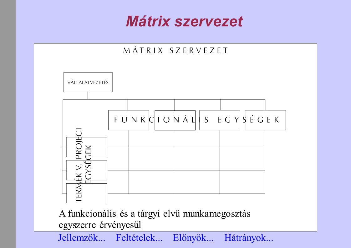 Mátrix szervezet A funkcionális és a tárgyi elvű munkamegosztás egyszerre érvényesül Jellemzők... Feltételek... Előnyök... Hátrányok...