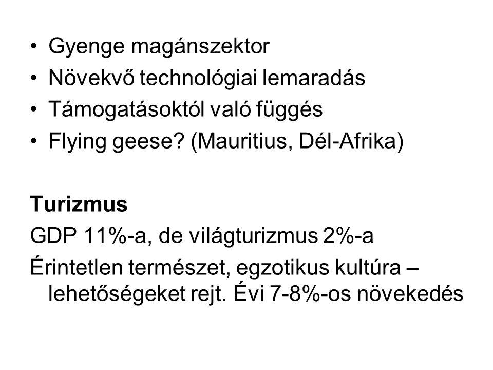 Gyenge magánszektor Növekvő technológiai lemaradás Támogatásoktól való függés Flying geese? (Mauritius, Dél-Afrika) Turizmus GDP 11%-a, de világturizm