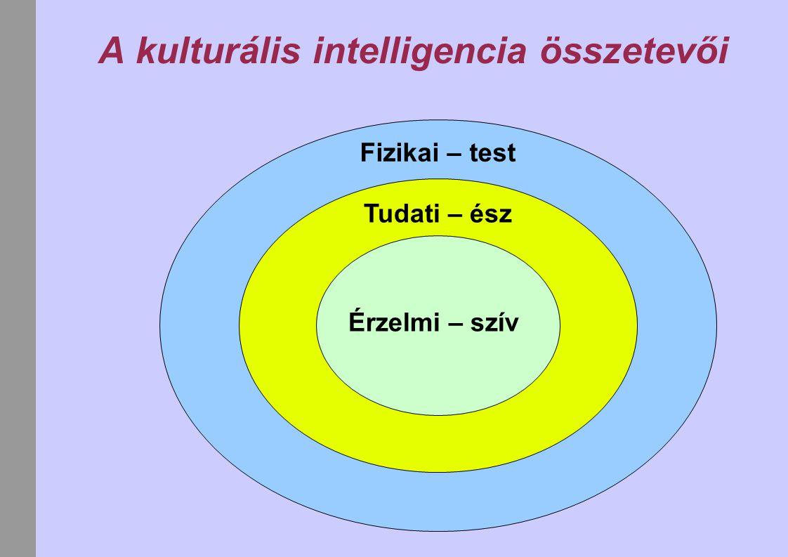 A kulturális intelligencia összetevői Fizikai – test Tudati – ész Érzelmi – szív