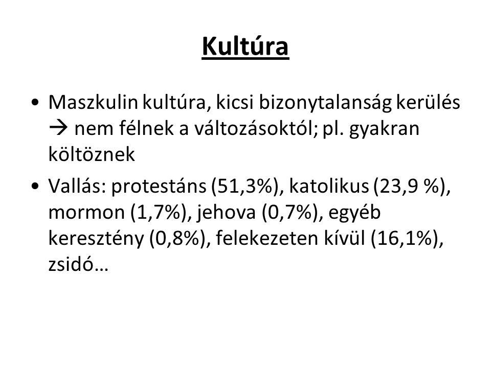Kultúra Maszkulin kultúra, kicsi bizonytalanság kerülés  nem félnek a változásoktól; pl. gyakran költöznek Vallás: protestáns (51,3%), katolikus (23,