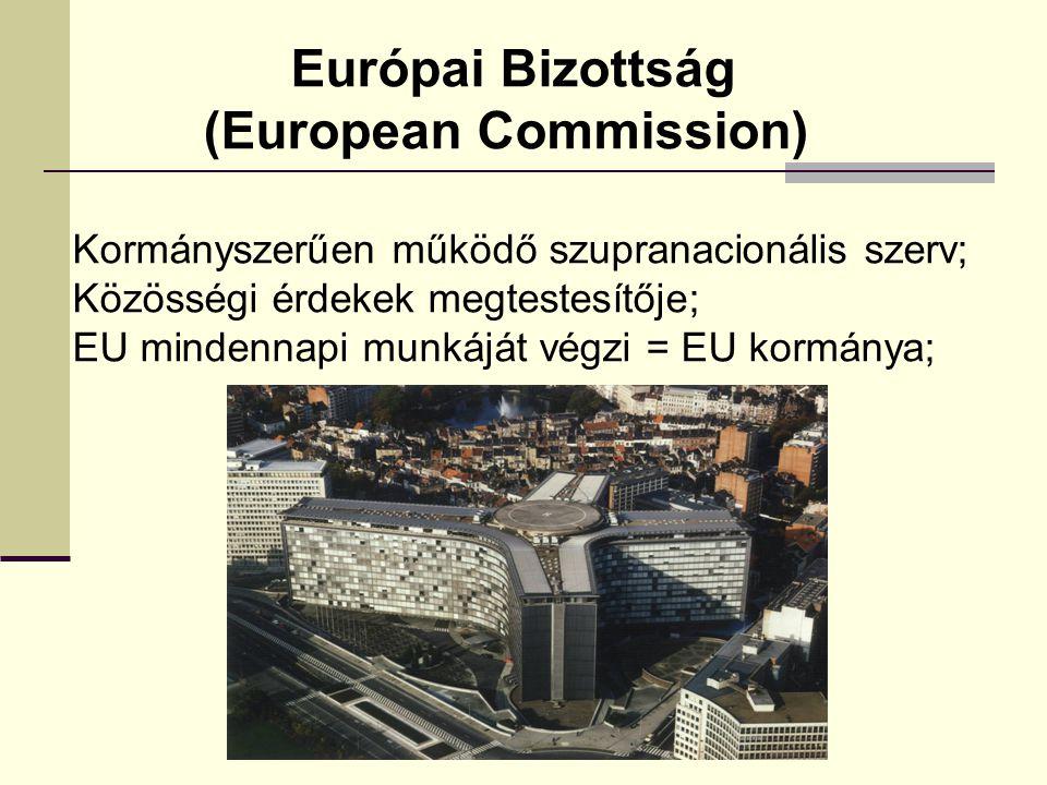 Európai Bizottság (European Commission) Kormányszerűen működő szupranacionális szerv; Közösségi érdekek megtestesítője; EU mindennapi munkáját végzi =