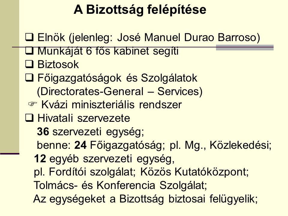 A Bizottság felépítése  Elnök (jelenleg: José Manuel Durao Barroso)  Munkáját 6 fős kabinet segíti  Biztosok  Főigazgatóságok és Szolgálatok (Directorates-General – Services)  Kvázi miniszteriális rendszer  Hivatali szervezete 36 szervezeti egység; benne: 24 Főigazgatóság; pl.