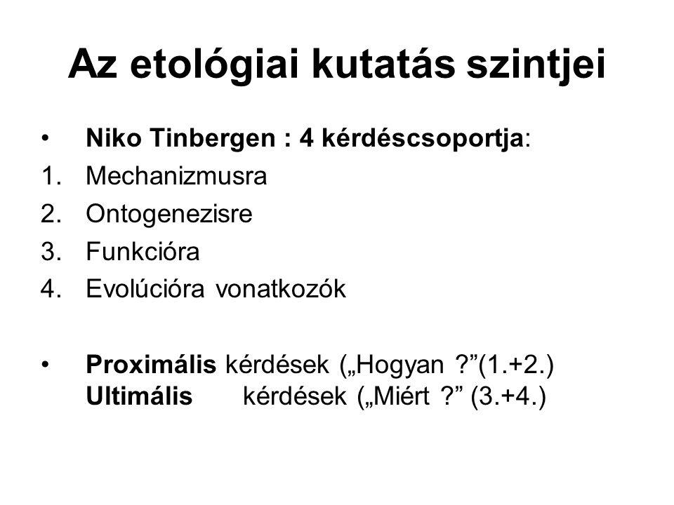 """Az etológiai kutatás szintjei Niko Tinbergen : 4 kérdéscsoportja: 1.Mechanizmusra 2.Ontogenezisre 3.Funkcióra 4.Evolúcióra vonatkozók Proximális kérdések (""""Hogyan (1.+2.) Ultimáliskérdések (""""Miért (3.+4.)"""