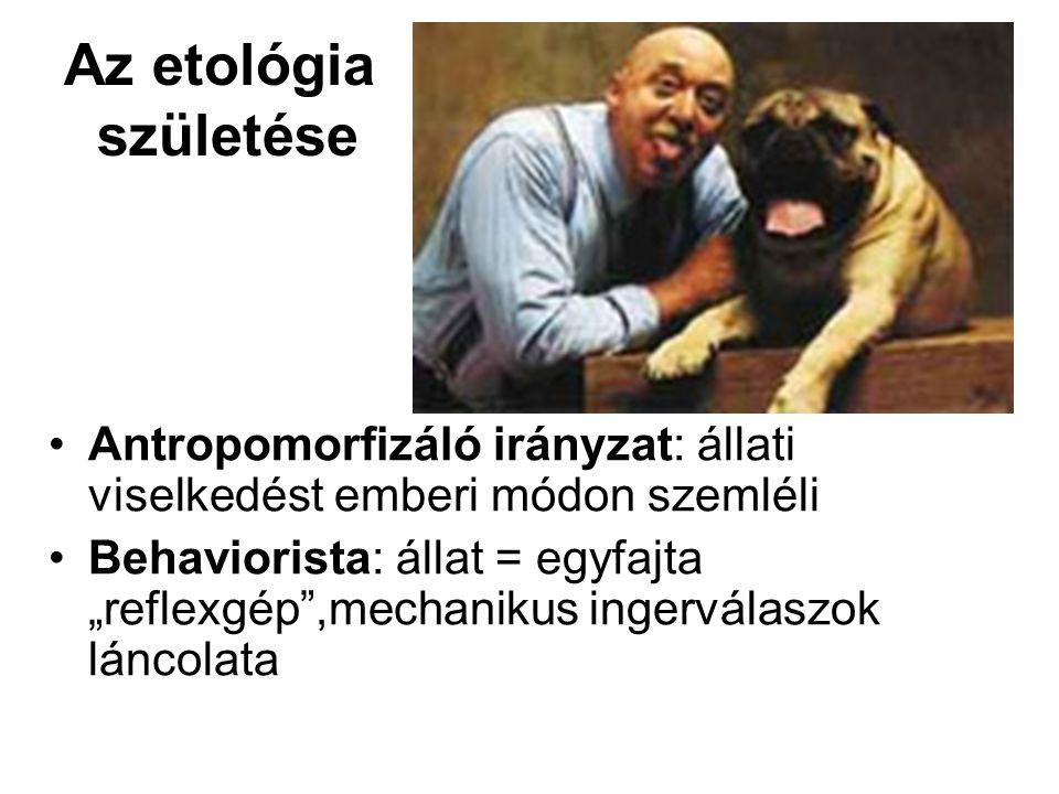 """Az etológia születése Antropomorfizáló irányzat: állati viselkedést emberi módon szemléli Behaviorista: állat = egyfajta """"reflexgép ,mechanikus ingerválaszok láncolata"""
