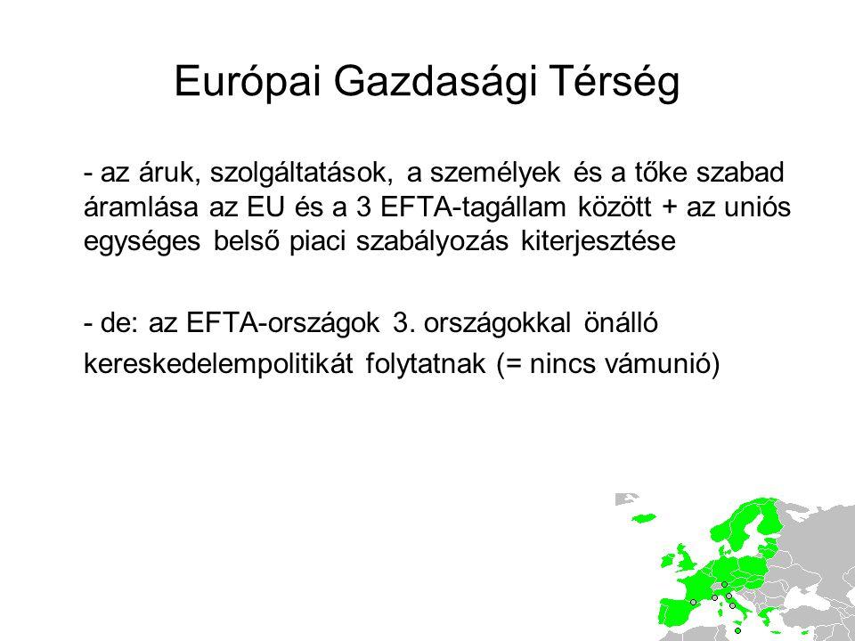 Európai Gazdasági Térség - az áruk, szolgáltatások, a személyek és a tőke szabad áramlása az EU és a 3 EFTA-tagállam között + az uniós egységes belső