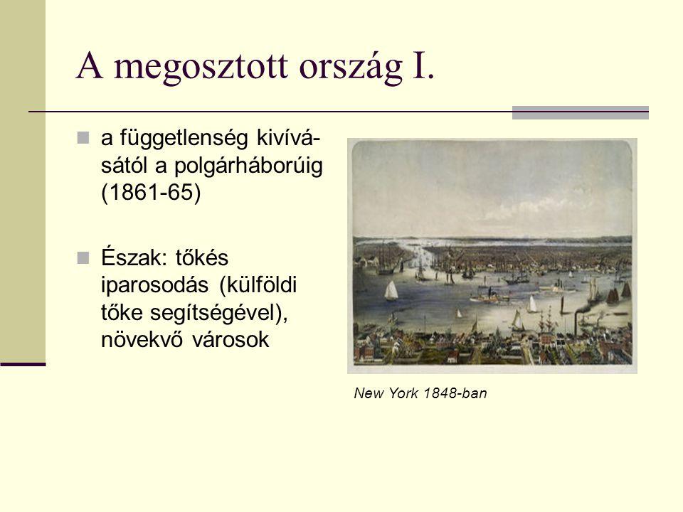 A megosztott ország I. a függetlenség kivívá- sától a polgárháborúig (1861-65) Észak: tőkés iparosodás (külföldi tőke segítségével), növekvő városok N