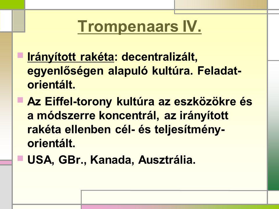 Trompenaars IV.Irányított rakéta: decentralizált, egyenlőségen alapuló kultúra.