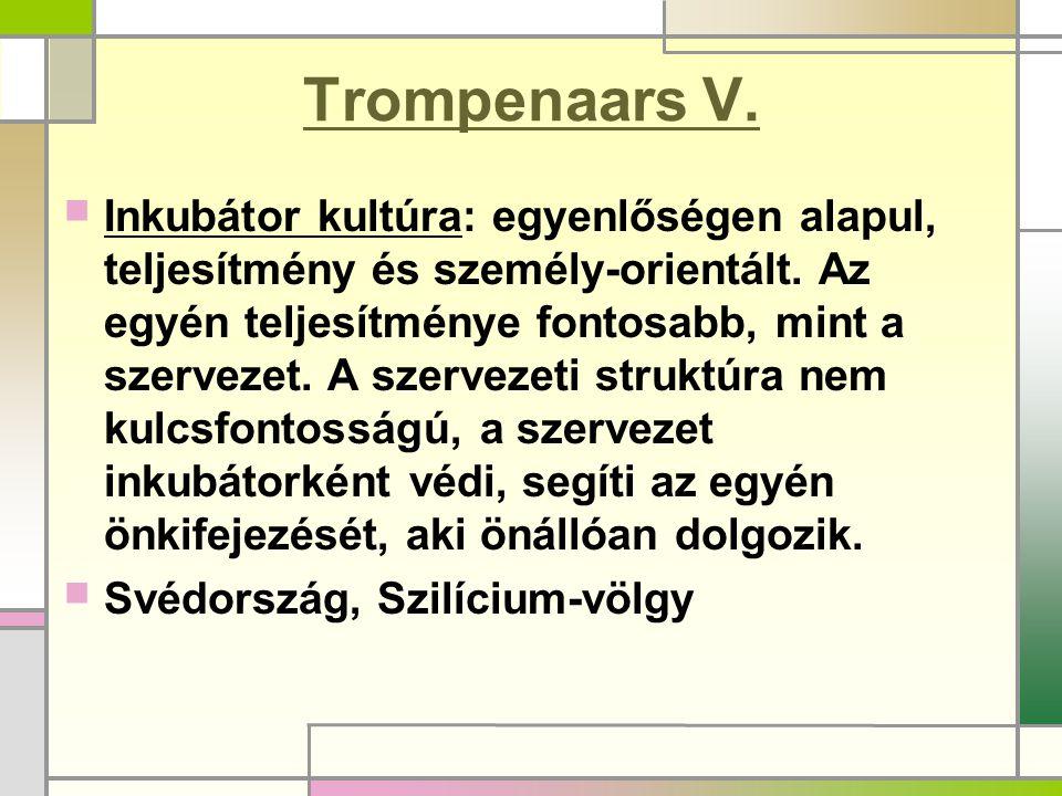 Trompenaars V.Inkubátor kultúra: egyenlőségen alapul, teljesítmény és személy-orientált.