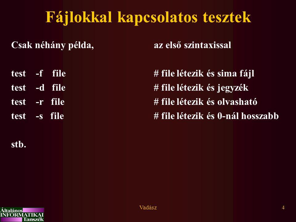Vadász4 Fájlokkal kapcsolatos tesztek Csak néhány példa, test -f file test -d file test -r file test -s file stb.