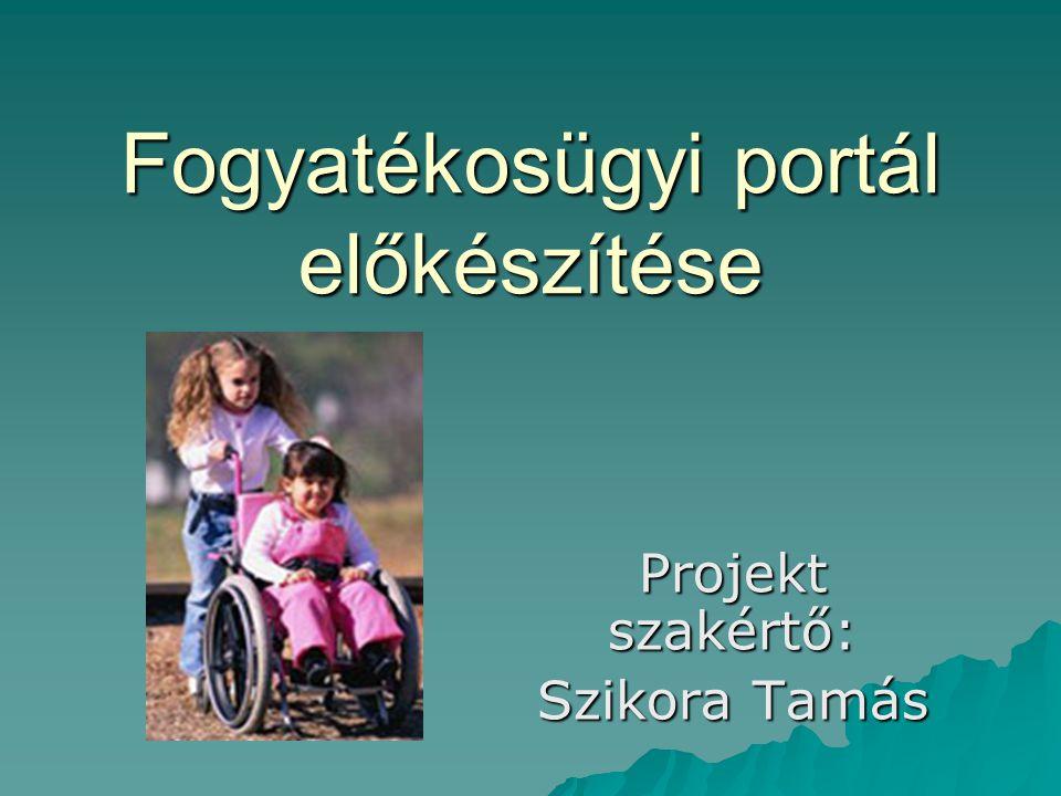 Fogyatékosügyi portál előkészítése Projekt szakértő: Szikora Tamás