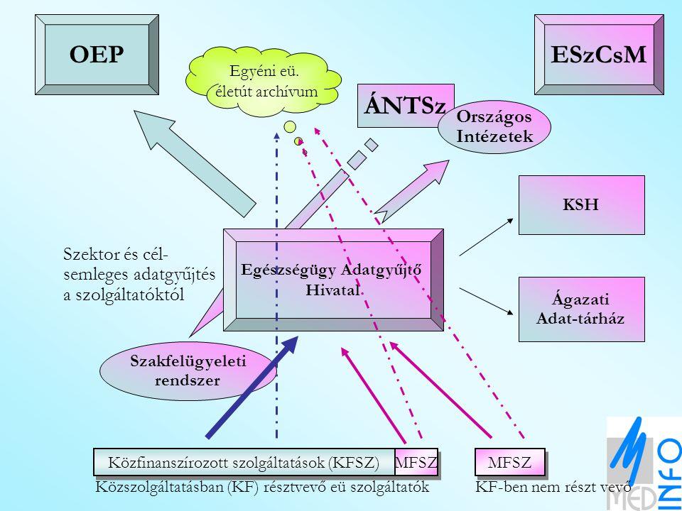 Közfinanszírozott szolgáltatások (KFSZ) MFSZ Közszolgáltatásban (KF) résztvevő eü szolgáltatókKF-ben nem részt vevő OEPESzCsM Szakfelügyeleti rendszer