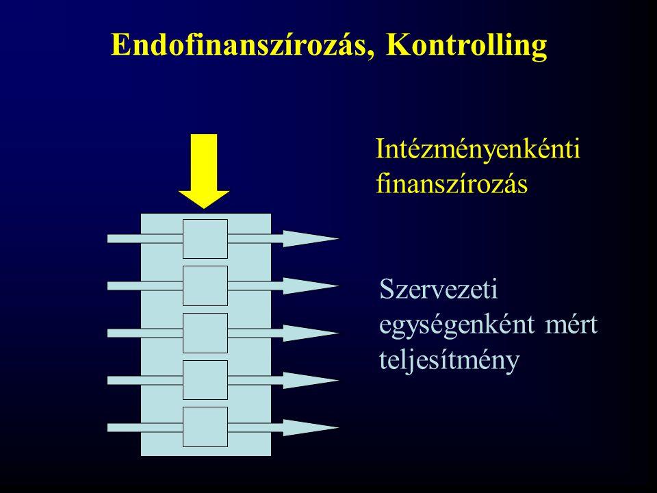 Endofinanszírozás, Kontrolling Szervezeti egységenként mért teljesítmény Intézményenkénti finanszírozás