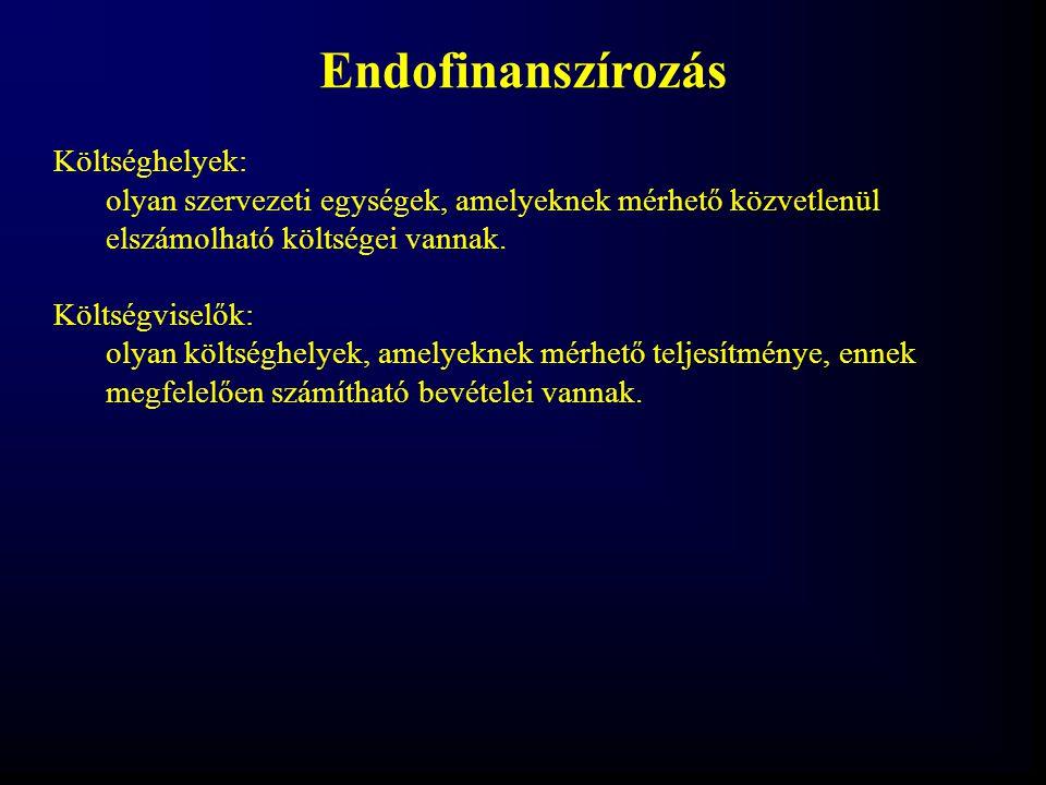 Endofinanszírozás Költséghelyek: olyan szervezeti egységek, amelyeknek mérhető közvetlenül elszámolható költségei vannak. Költségviselők: olyan költsé