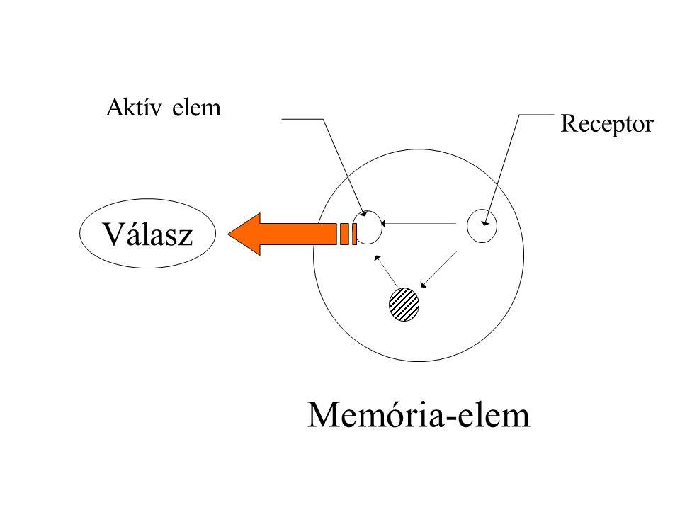 Memória-elem Receptor Aktív elem Válasz