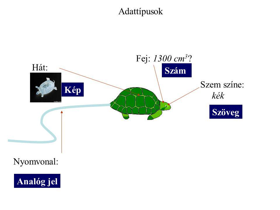 Hát: Fej: 1300 cm 3 Szem színe: kék Nyomvonal: Analóg jel Kép Szöveg Szám Adattípusok