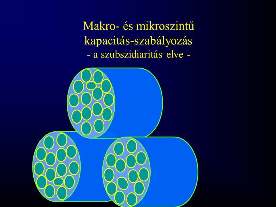 Makro- és mikroszintű kapacitás-szabályozás - a szubszidiaritás elve -