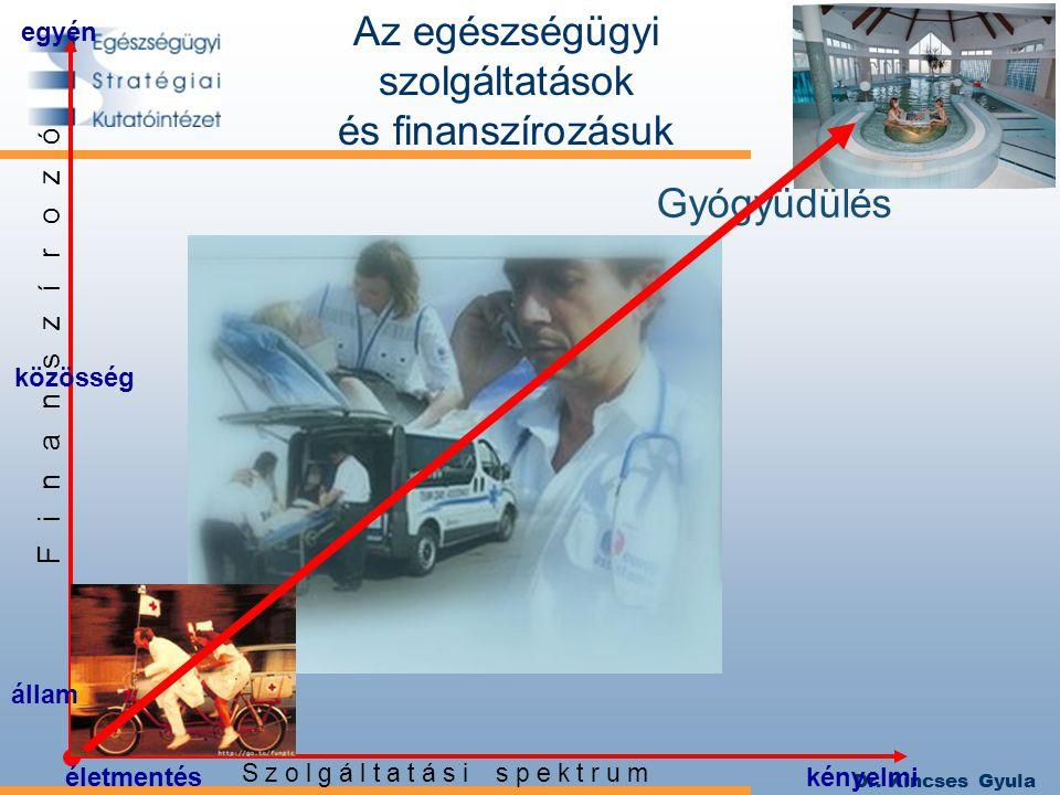 Dr. Kincses Gyula közösség egyén S z o l g á l t a t á s i s p e k t r u m F i n a n s z í r o z ó kényelmiéletmentés Az egészségügyi szolgáltatások é