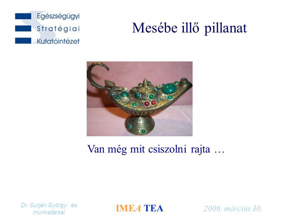Dr. Surján György és munkatársai IMEA TEA 2006. március 30. Mesébe illő pillanat Van még mit csiszolni rajta …