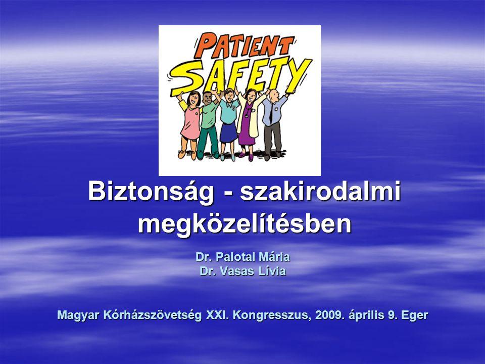 Biztonság - szakirodalmi megközelítésben Dr. Palotai Mária Dr.