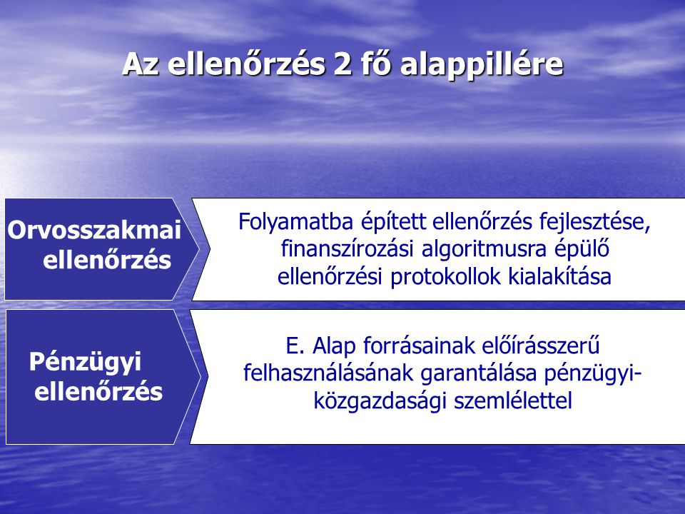 Az ellenőrzés 2 fő alappillére Orvosszakmai ellenőrzés Pénzügyi ellenőrzés E.