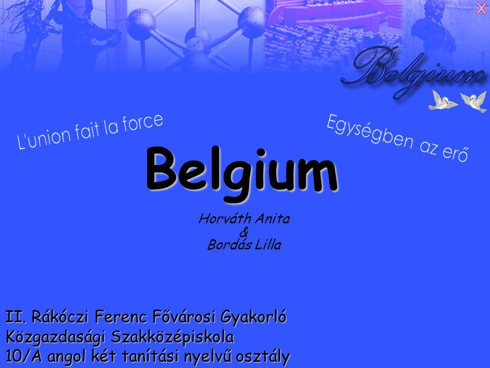 Alapadatok Fővárosa: Brüsszel (Bruxelles / Brussel) Államformája: alkotmányos monarchia Hivatalos nyelv : holland, francia, német, flamand Területe: 30 528 km² Népesség: 10 045 000 fő Népsűrűség: 340 fő/km² Más nyelven: Koninkrijk België Royaume de Belgique Königreich Belgien Nemzeti ünnep: július 21.