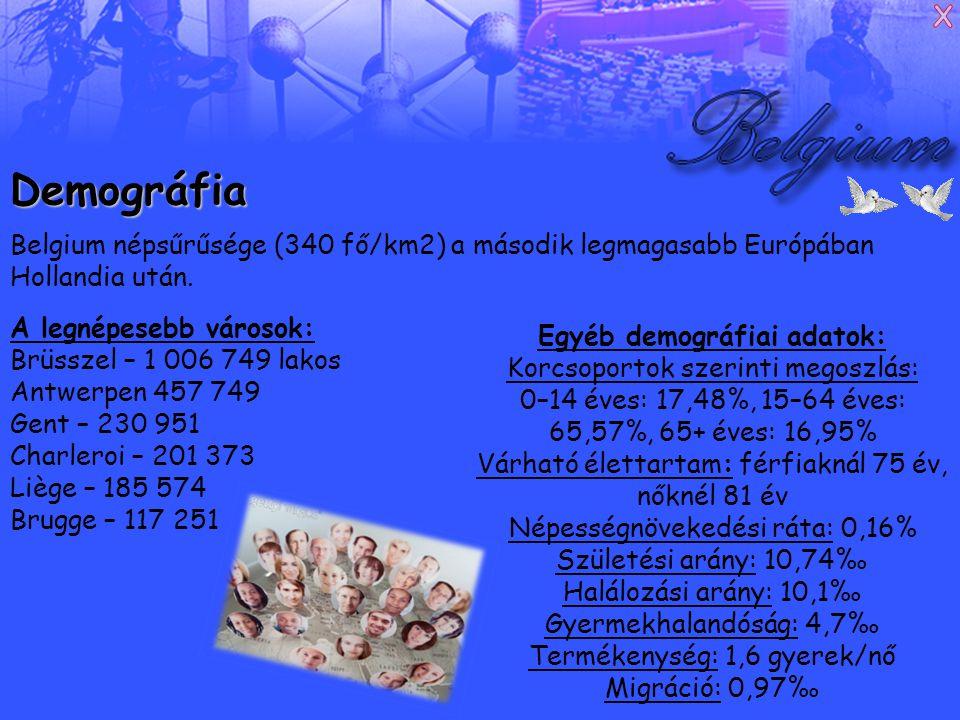 Demográfia Belgium népsűrűsége (340 fő/km2) a második legmagasabb Európában Hollandia után.