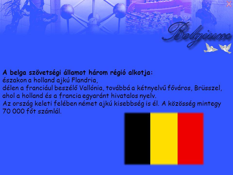A belga szövetségi államot három régió alkotja: északon a holland ajkú Flandria, délen a franciául beszélő Vallónia, továbbá a kétnyelvű főváros, Brüsszel, ahol a holland és a francia egyaránt hivatalos nyelv.