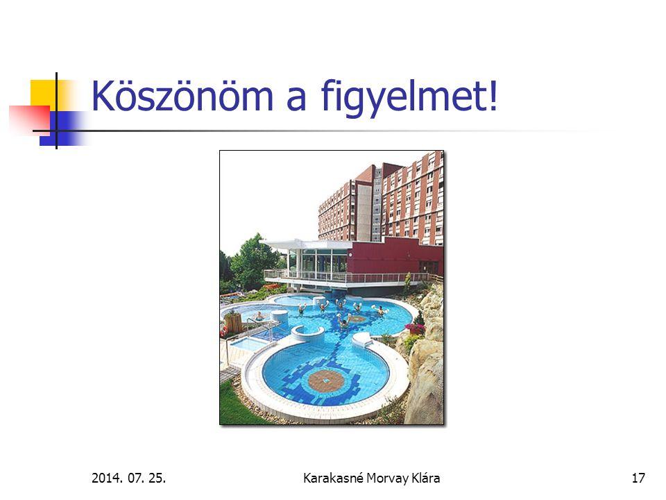 2014. 07. 25.Karakasné Morvay Klára17 Köszönöm a figyelmet!