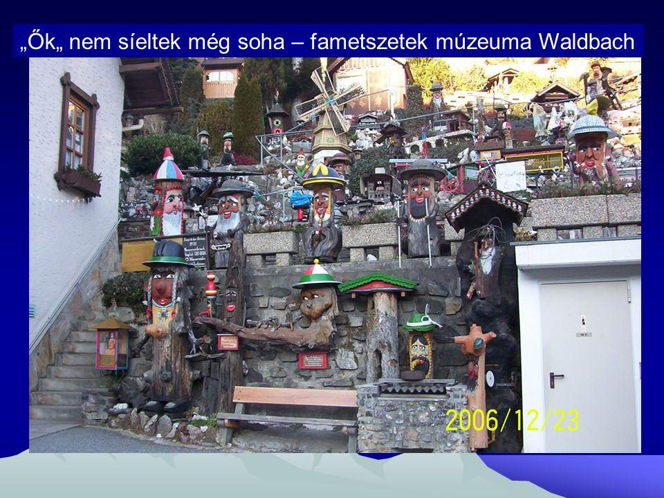"""""""Ők"""" nem síeltek még soha – fametszetek múzeuma Waldbach"""