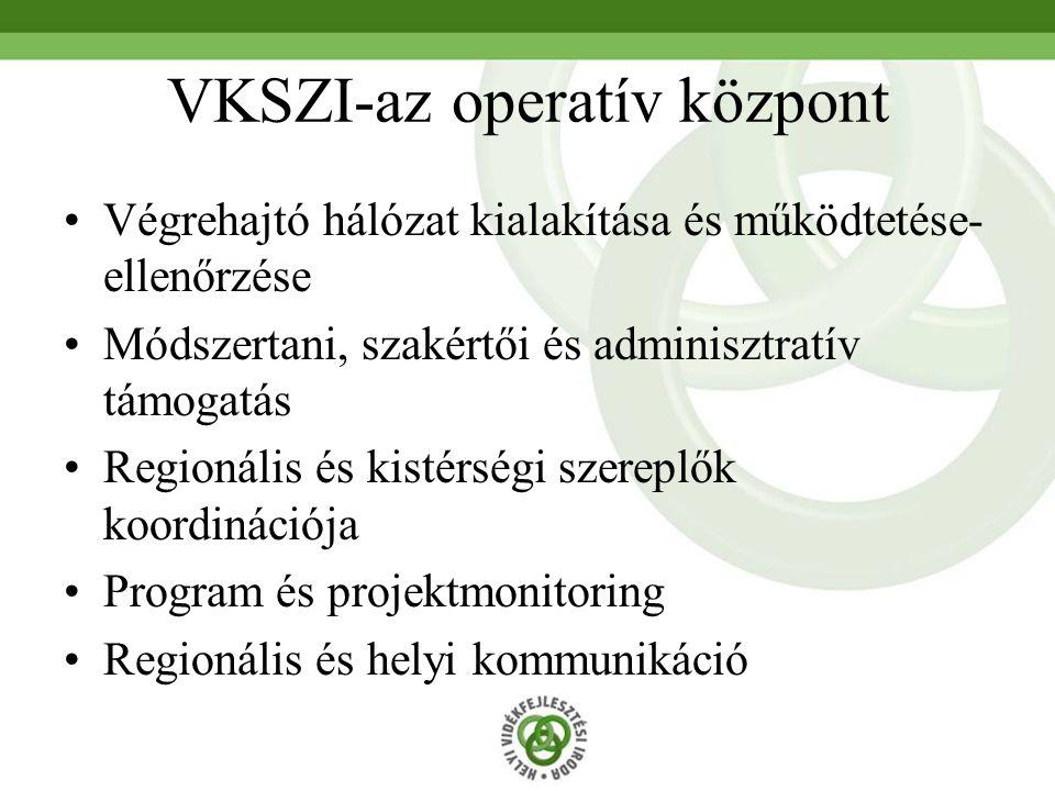 VKSZI-az operatív központ Végrehajtó hálózat kialakítása és működtetése- ellenőrzése Módszertani, szakértői és adminisztratív támogatás Regionális és