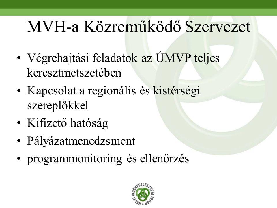 HVI-a kistérségi operatív központ Alkalmas humán és infrastrukturális kapacitás létrehozása Részvétel a kistérség komplex programjában Helyi Vidékfejlesztési Közösség szervezése és a vele való együttműködés Helyi Akciócsoport létrehozásában való közreműködés Helyi Vidékfejlesztési Terv készítése és a végrehajtásban való közreműködés a Helyi Akciócsoportokkal közösen Folyamatos információáramlás biztosítása az ÚMVP III-as és IV-es tengellyel kapcsolatban.