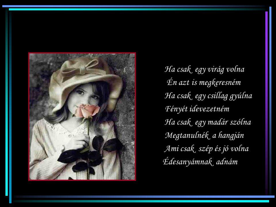 Ha csak egy virág volna Én azt is megkeresném Ha csak egy csillag gyúlna Fényét idevezetném Ha csak egy madár szólna Megtanulnék a hangján Ami csak szép és jó volna Édesanyámnak adnám