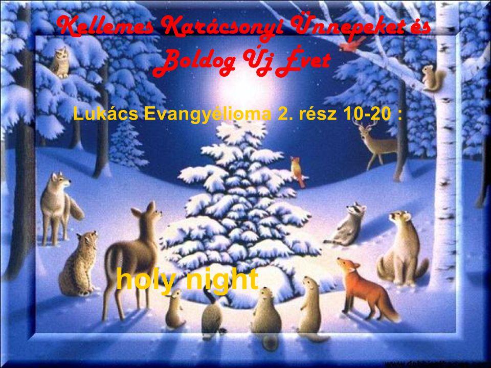 Kellemes Karácsonyi Ünnepeket és Boldog Új Évet holy night Lukács Evangyélioma 2. rész 10-20 :