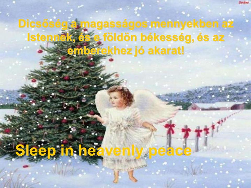 És hirtelenséggel jelenék az angyallal mennyei seregek sokasága, a kik az Istent dicsérik és ezt mondják vala: Sleep in heavenly peace