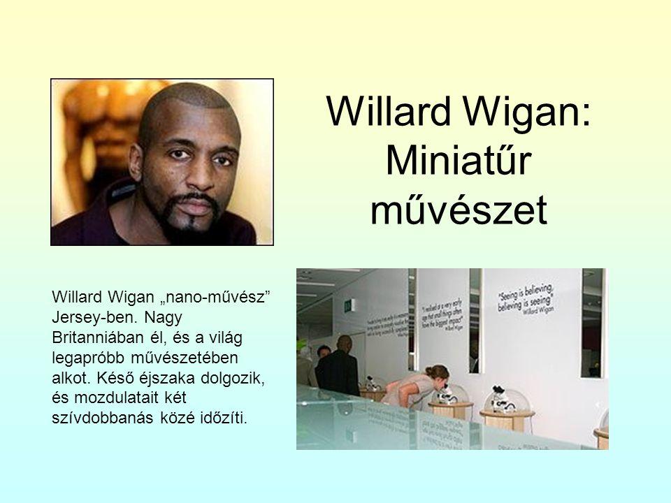 """Willard Wigan: Miniatűr művészet Willard Wigan """"nano-művész"""" Jersey-ben. Nagy Britanniában él, és a világ legapróbb művészetében alkot. Késő éjszaka d"""